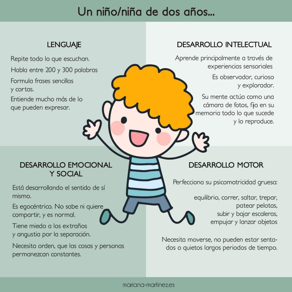 breve explicación del desarrollo de un niño de dos años